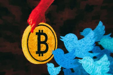 Twitter and the massive bitcoin rip-off: what occurred subsequent
