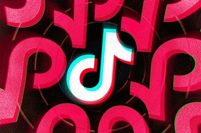 Decide rejects TikTok creators' request to delay ban, says they gained't undergo 'irreparable hurt'
