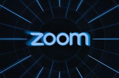 A newbie's information to utilizing Zoom