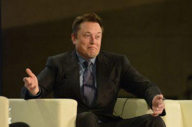 Elon Musk says he has examined constructive for COVID-19