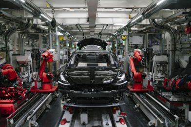 Musk says Apple handed on Tesla acquisition three years in the past