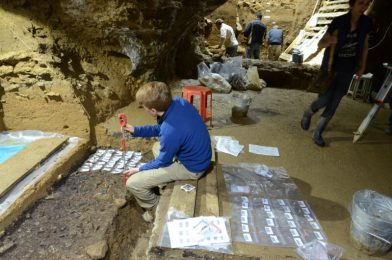 2 current research sequence DNA from the earliest Homo sapiens in Eurasia