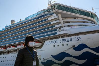 Cruise trade salty over CDC plan to maintain vacationers secure from COVID at sea